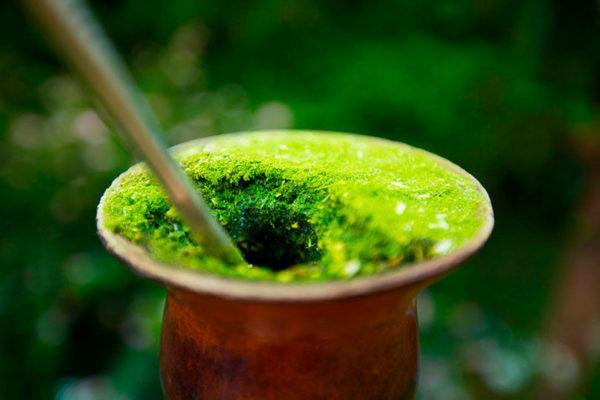 Chimarrão verdinho